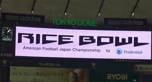 rice11.jpg